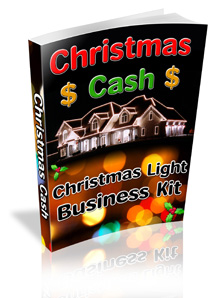 """Christmas Light Business Kit"